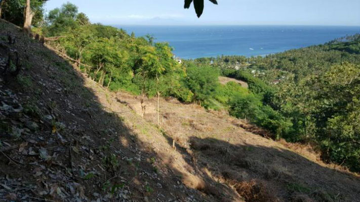 Senggigi property for sale