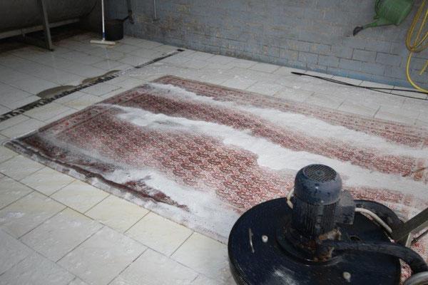 Shampoonierter Teppich.