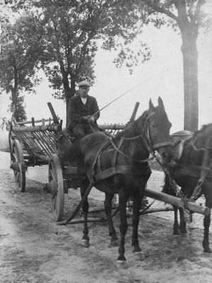 (0630) Heuwagen auf der Döllner Chaussee, 1920er Jahre