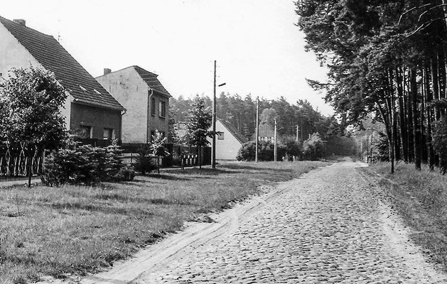 (0030) Rehberge 1982