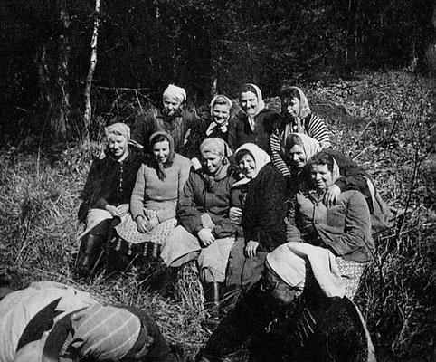(0404) Waldfrauen, um 1960