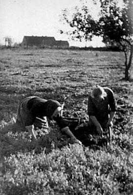 (218) Feldarbeit