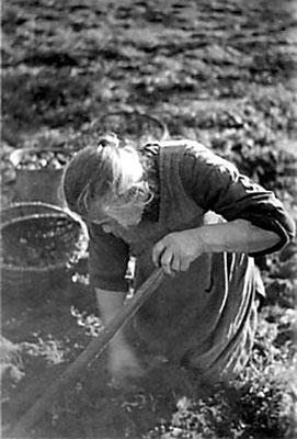 (0206) Anna Schäfer (Großmutter von Heinz Schäfer), um 1930