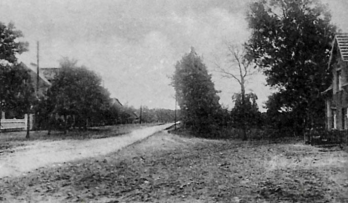 """(0184/4) Dorfaue 1914, Text auf der Rückseite: Blick auf die Dorfaue, den späteren Park (1930) ... Im Vordergrund - Mitte - die spätere 'Hitler-Eiche'. Der Platz - eingezäunt - hieß Adolf-Hitler-Platz."""""""