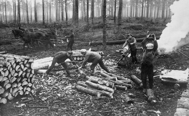 (170) Waldarbeiter bei der Arbeit, 1937