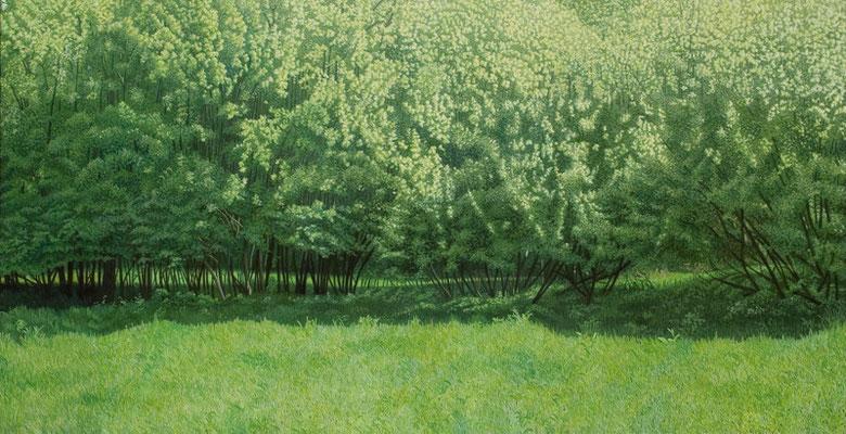 Viele Bäume | 2009 | 95 x 200 cm | Acryl auf Baumwolle