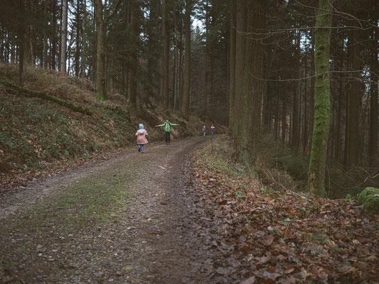 Neckarsteig, etappe 4, hirschhorn, eberbach, wandern, augenblickbewahrer.com, fotoreportage