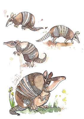 "Character design for ""Armadillo"", ink & watercolours, 2015"