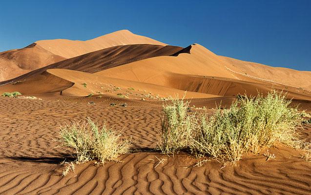 Die Dünen im Sossusvlei 2