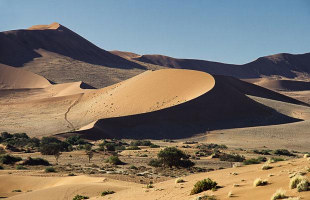 Die Dünen im Sossusvlei 1
