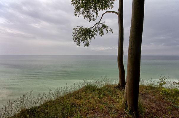 auf dem Kliff I