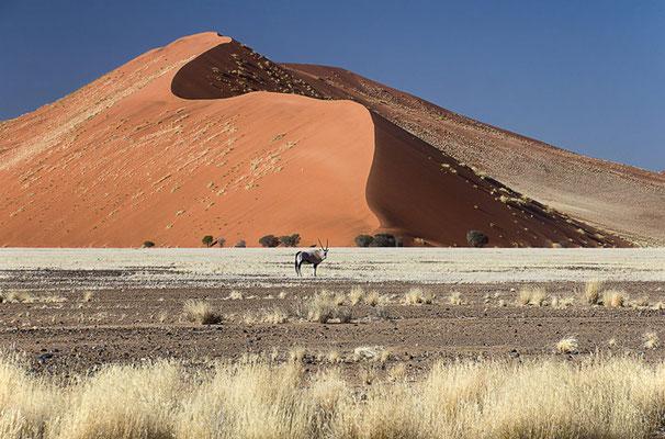 Die Dünen im Namib Naukluft Park 6
