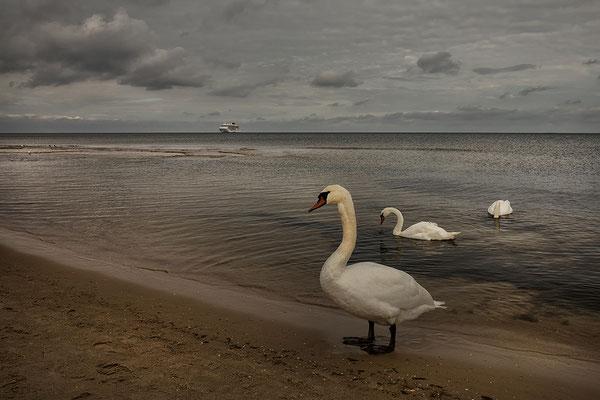 Ahlbeck Usedom