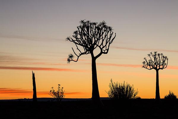 Sonnenaufgang am Canyonrand