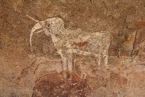 Der weiße Elefant in der Philipp´s Cave
