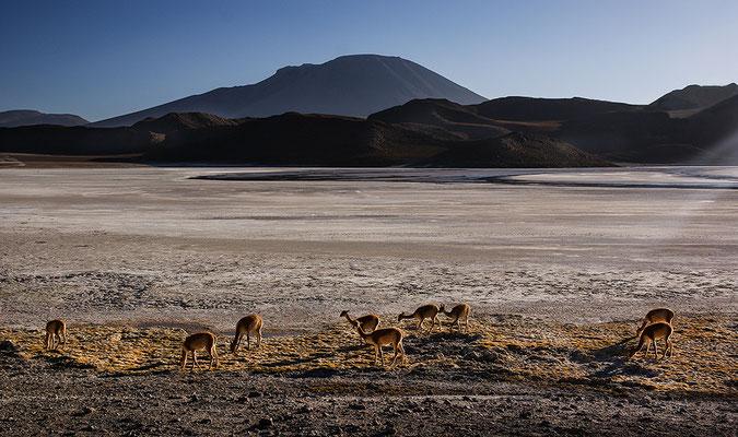 Siloli-Wüste I