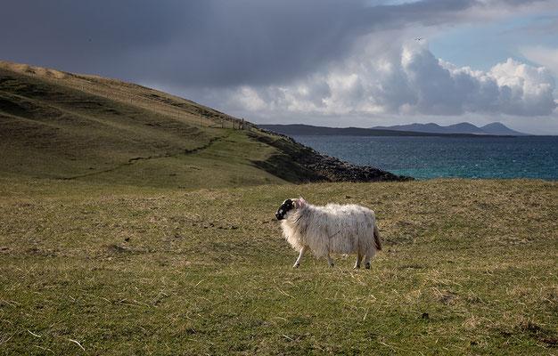 Rubh an Teampaill, Westküste der Isle of Harris