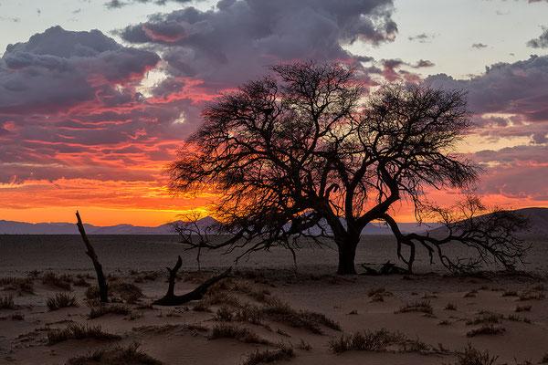 Bei der Düne 40 beim Sonnenaufgang