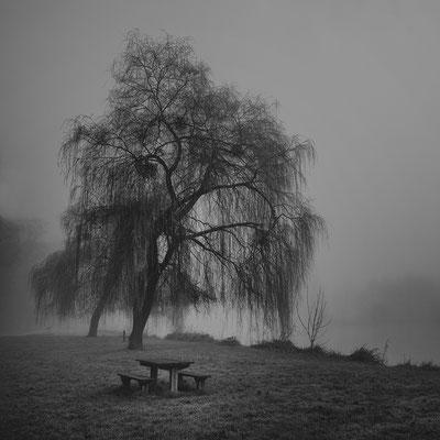 Bouconville, Lac d'Abbaye de Vauclaire