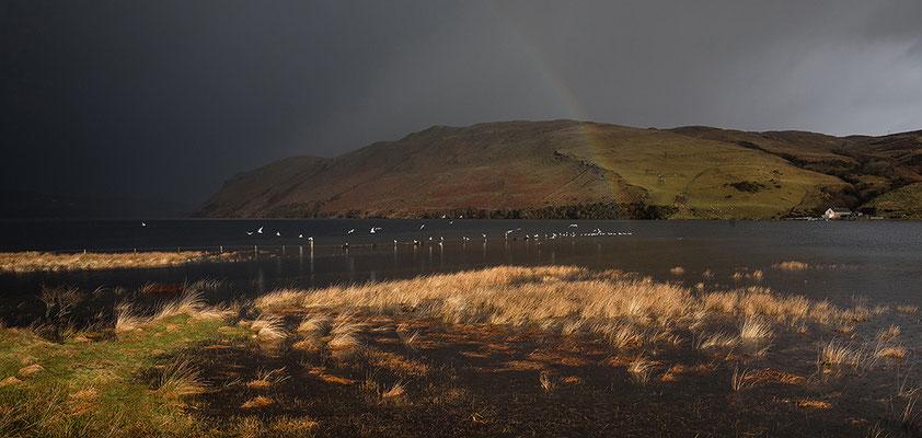 Loch Harport bei Merkadale, Skye