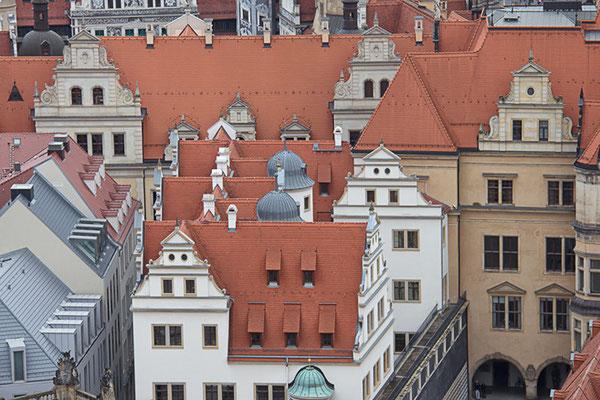 Über den Dächern von Dresden III