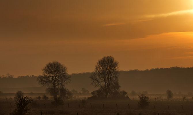 Unterwegs am frühen Morgen III