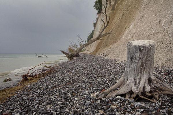 Impressionen von Rügens Kreideküste VII