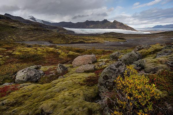 Blick auf Fjallsarlon und Fjallsjökull