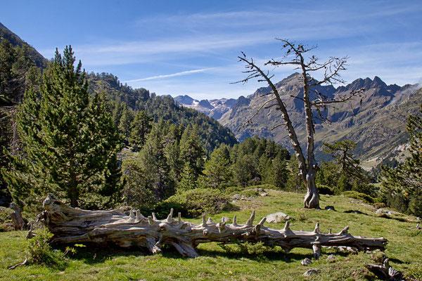 Zwischen La Besurta und Plan de Aiguallut