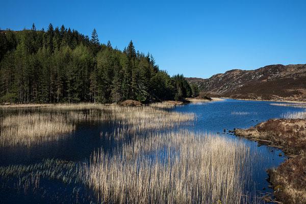 Nahe beim Loch Laxford