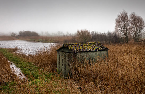 Le Hourdel, Somme-Mündung