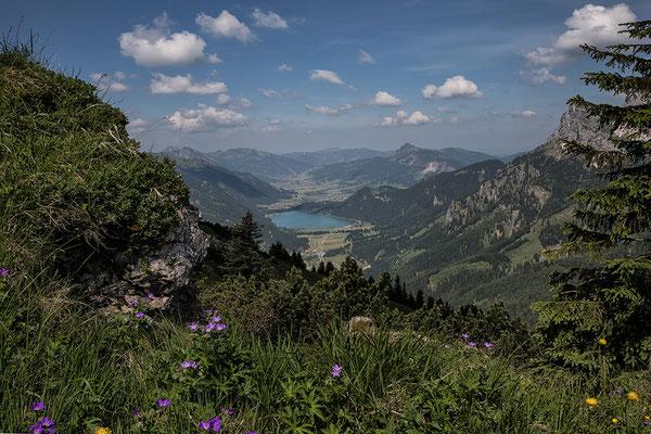 Blick vom Hahnenkamm zum Haldensee und ins Tannheimer Tal