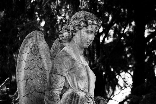 Melatenfriedhof Köln 2