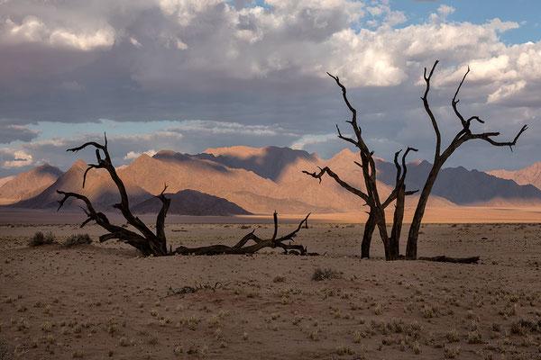 Kanaan  Blick von den Dünen auf Tirasberge