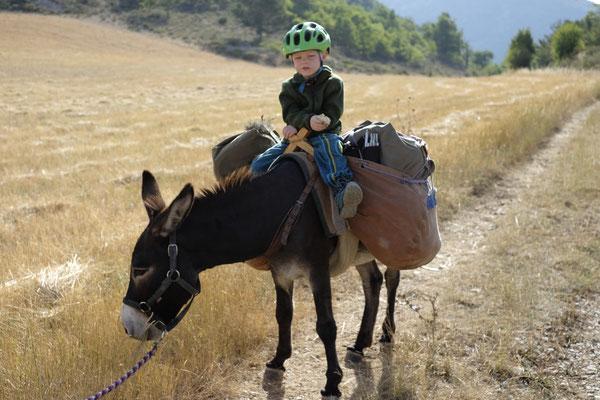 Auf dem Rücken eines Esels, da lässt es sich aushalten