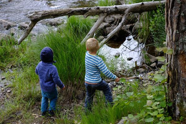 Die Kinder entdecken Wald und See