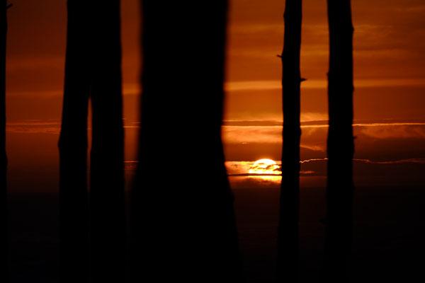 Die Sonnenuntergänge an der Düne sind unglaublich schön