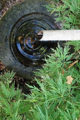 Ein Wassertropfen fällt in ein steinerndes Wasserbecken. Wasserringe bilden sich um den Tropfen. Wie ein Mandala einer Meditation