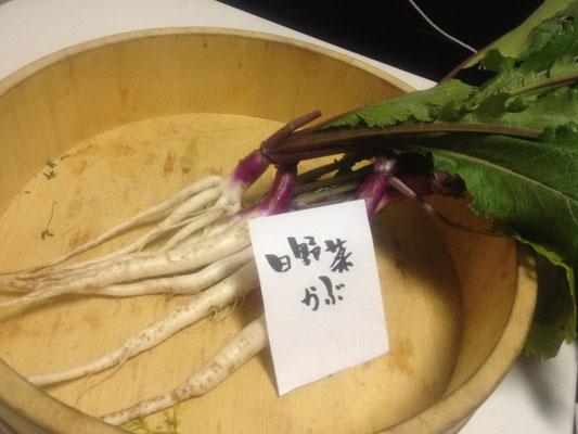 日野菜カブ