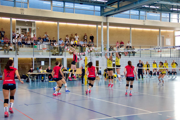 VB Therwil – VBC Visp