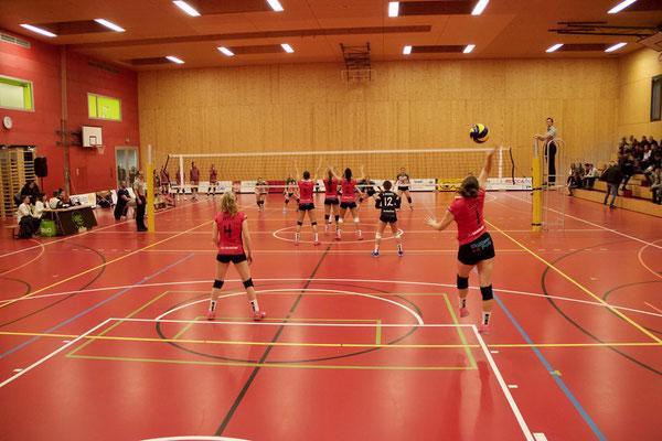 VBC Visp – Volley Schönenwerd (in Fully)