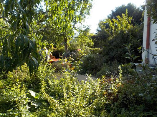 Gartenansicht/Teilansicht südlich