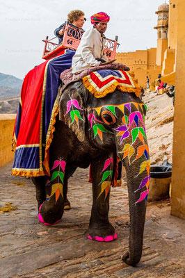Bildband, Rajasthan, Indien, Goldenes Dreieck, Reisefuehrer, travel guide, Foto, Raimund Franken, Fort Amber