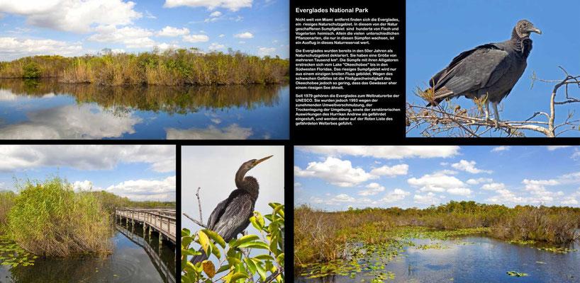 Bildband Florida, USA, Raimund Franken, Anhinga Trail, Sumpflandschaft, Everglades National Park,