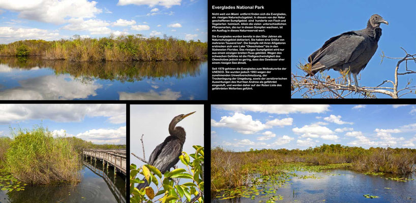 Bildband Florida, USA, Reisefuehrer, travel guide, Raimund Franken, Anhinga Trail, Sumpflandschaft, Everglades National Park,