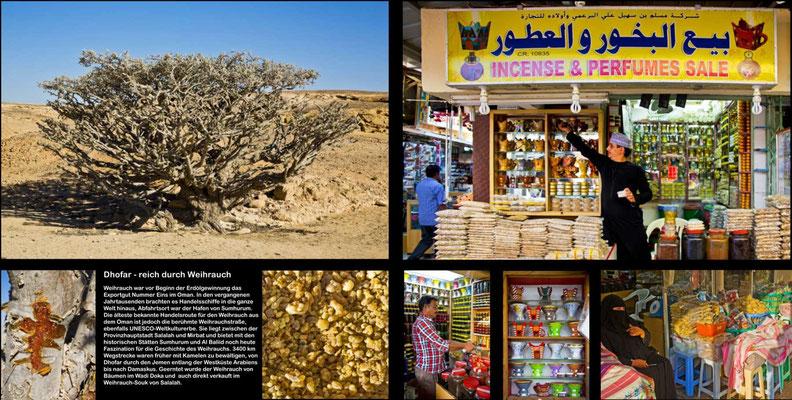 Bildband Oman, Reisefuehrer, travel guide, Reisebildband, Raimund Franken, Weihrauchbaeume im Wadi Doka, Salalah