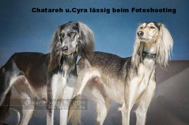 Chatareh Fardos el Arab und CyraFardos el Arab