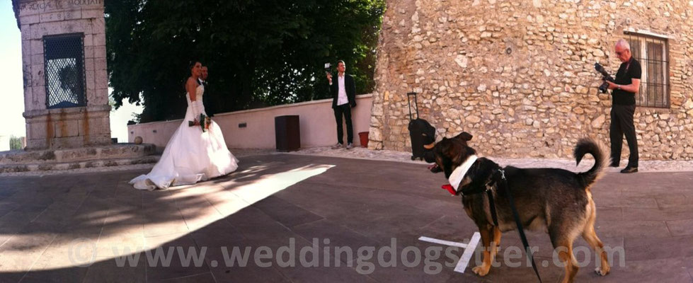 MATRIMONIO WEDDING DOG SITTER ROMA