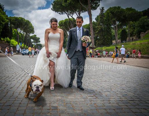 SPOSI CON IL CANE A ROMA COLOSSEO FOTO MATRIMONIO