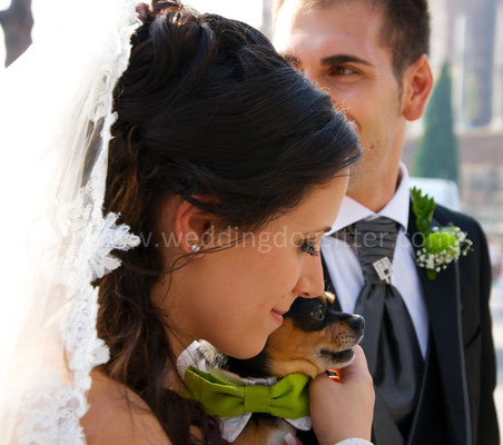 MATRIMONIO WEDDING DOG SITTER ROMA VILLA BELLINI